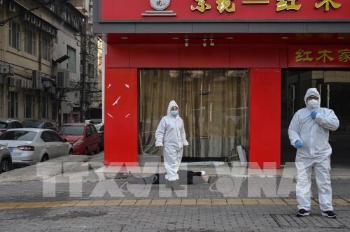 Wabah radang pernapasan akut akibat nCoV: Jumlah orang yang meninggal di Tiongkok mencapai 304 orang - ảnh 1