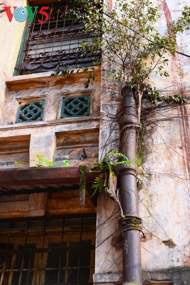 Keindahan arsitektur vila kuno Stasiun siaran Bach Mai - ảnh 9