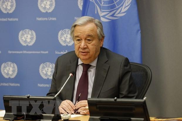 PBB mengimbau kepada komunitas internasional supaya bersatu melawan Covid-19 - ảnh 1