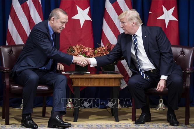 Presiden AS-Turki menekankan perlunya melakukan gencatan senjata di Suriah dan Libia selama waktu terjadinya wabah Covid-19 - ảnh 1