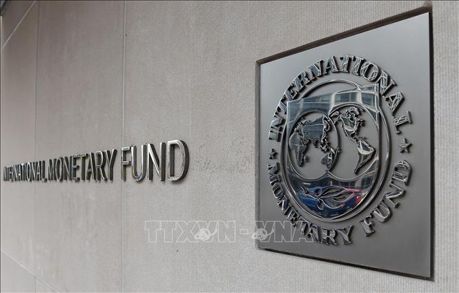 IMF: Wabah Covid-19 mengancam secara serius kestabilan keuangan - ảnh 1