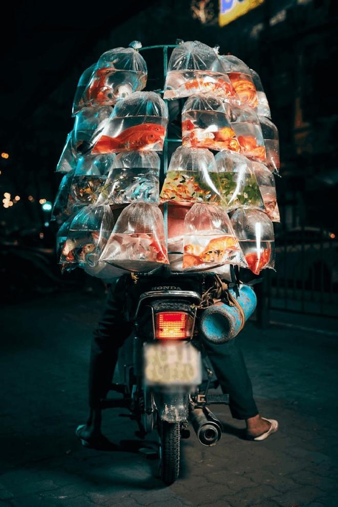 Foto karya fotografer Inggris tentang sepeda motor yang menjajakan ikan hias di Vietnam meraih hadiah di AS - ảnh 2