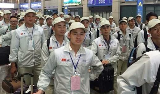Membantu pekerja Vietnam di Jepang yang terkena PHK karena wabah Covid-19 - ảnh 1