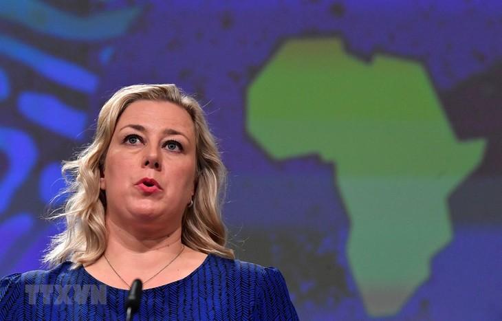 Kalangan pejabat Uni Eropa mengimbau untuk membuat kebijakan bersama untuk mencegah krisis - ảnh 1