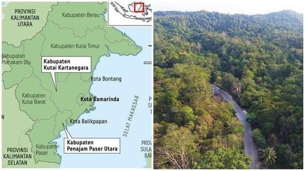 Indonesia menunda rencana memindahkan Ibukota sampai tahun 2024 karena wabah Covid-19 - ảnh 1