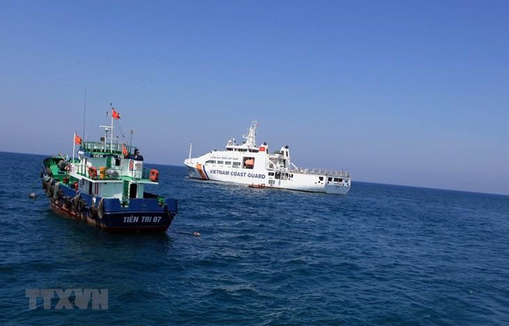 Mengatasi kartu kuning IUU: Provinsi Phu Yen secara serius melaksanakan penangkapan ikan secara legal - ảnh 1
