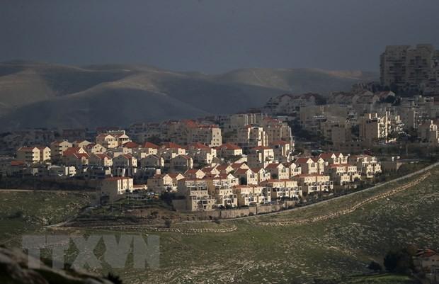 DK PBB membahas situasi di wilayah Palestina yang diduduki Israel - ảnh 1