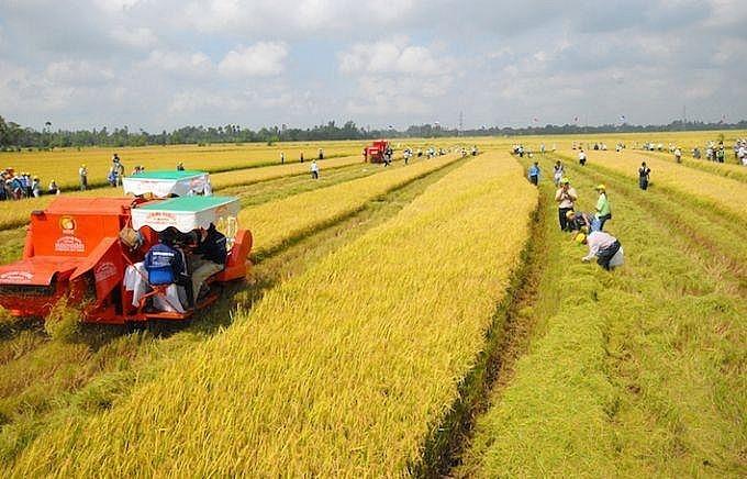 Para anggota MN menyetujui haluan bebas pajak tanah pertanian sebesar sekitar 7,5 triliun VND per tahun - ảnh 1