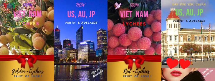 Sembilan ton buah leci segar Vietnam akan segera tiba di pelabuan Australia - ảnh 1