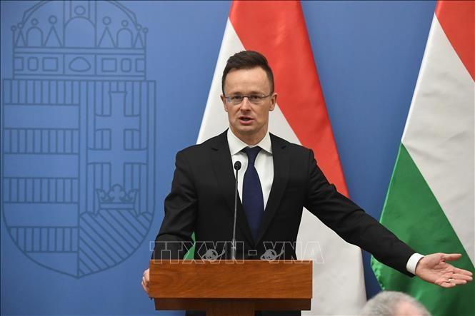 Mendorong kerjasama strategis antara negara-negara Eropa Tengah dan Turki - ảnh 1