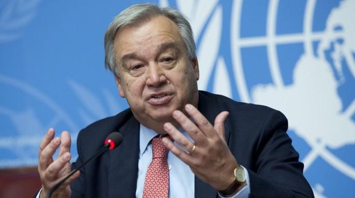 DK PBB Mendukung Imbauan Gencatan Senjata Global untuk Menghadapi Covid-19 - ảnh 1