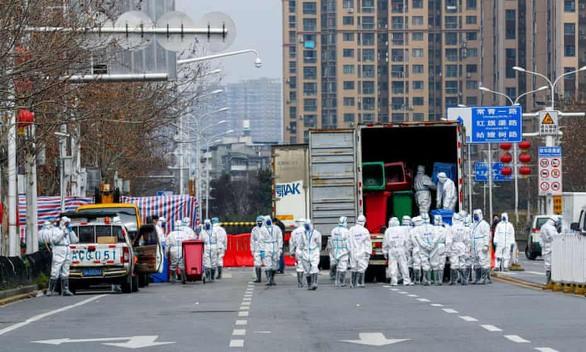WHO Bentuk Tim Penyelidik Patogen Baru untuk Cegah Pandemi di Masa Depan - ảnh 1