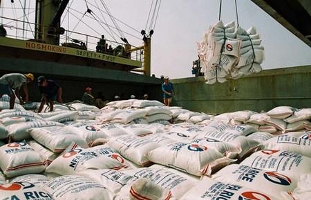 Объём экспорта сельскохозяйственной, лесной и рыбной продукции увеличился - ảnh 1