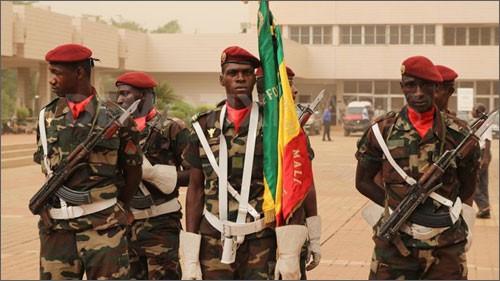 В Мали введено чрезвычайное положение - ảnh 1