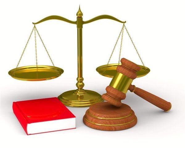 День закона будет отмечаться ежегодно 9 ноября - ảnh 1