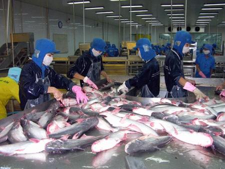 Министерство торговли США введет высокую антидемпинговую пошлину на вьетнамский пангасиус - ảnh 1