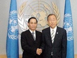 Вьетнам принял участие в дискуссиях в ООН - ảnh 1