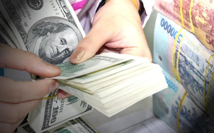2013 год был удачным для Вьетнама в проведении валютной политики - ảnh 1
