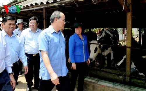 Глава ОФВ Нгуен Тхиен Нян провёл осмотр моделей кооперативов в городе Кантхо - ảnh 2