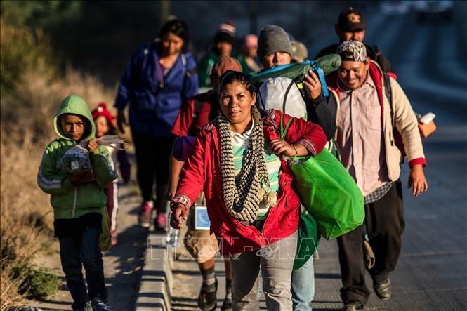 Многие страны отказались подписывать Всемирный пакт ООН о миграции - ảnh 1