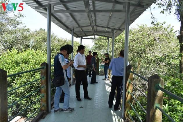 Аистовый сад Бангланг недалеко от города Кантхо - ảnh 2