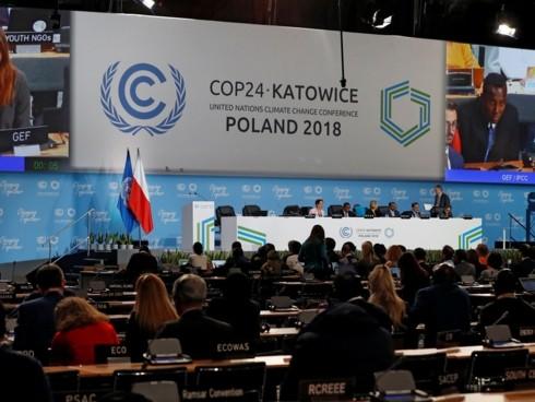 Неустанные усилия по борьбе с изменением климата  - ảnh 1