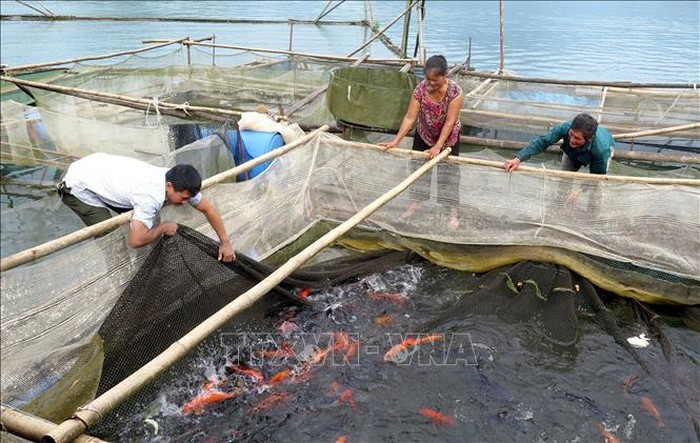 Ликвидация бедности в разных районах Вьетнама - ảnh 2