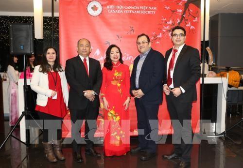 Вьетнамцы за границей готовятся к встрече Тэта - ảnh 1