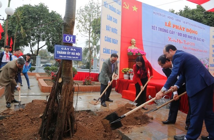 Праздник посадки деревьев в разных провинциях и городах Вьетнама - ảnh 1