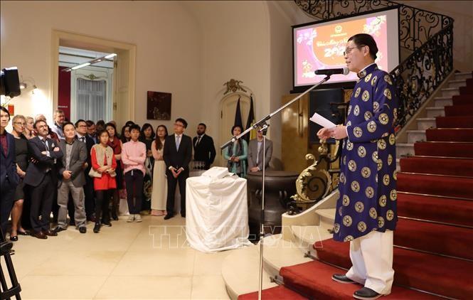 Дружеские отношения как между Вьетнамом и Евросоюзом, так и между Вьетнамом и Бельгией всё больше укрепляются - ảnh 1
