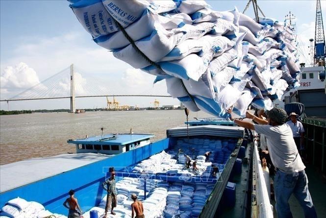 EVFTA знаменует начало новой эры в торговых отношениях между Вьетнамом и Европейским Союзом - ảnh 1