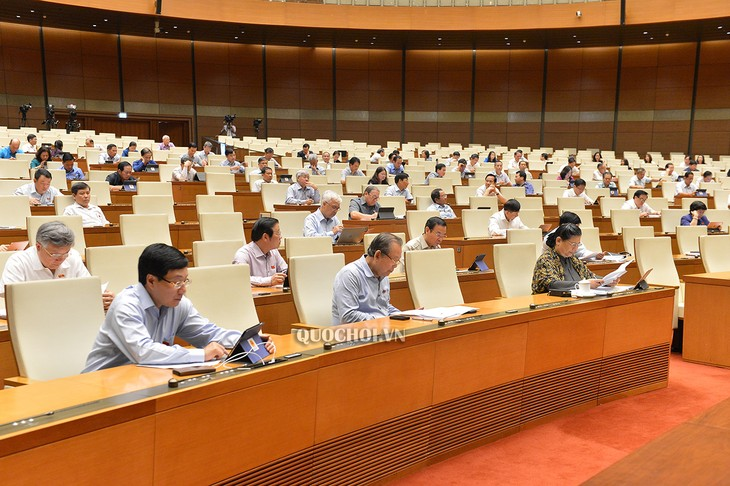 Депутаты парламента обсудили Резолюцию об экспериментальной реализации модели городского управления в городе Дананге - ảnh 1