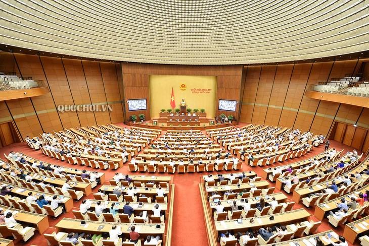 Национальное собрание Вьетнама продолжает обсуждать социально-экономическую ситуацию в стране - ảnh 1