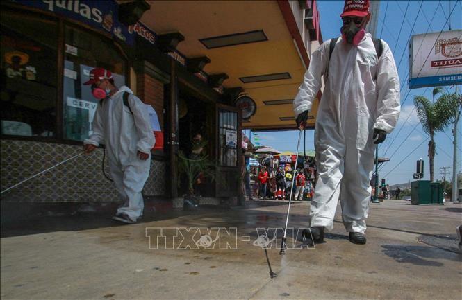 За сутки в США зафиксировали рекордное число случаев заражения коронавирусом, Мексика обогнала Францию по числу жертв - ảnh 1