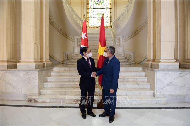 Министр иностранных дел Буй Тхань Шон провёл двустороннюю встречу с исполняющим обязанности министра иностранных дел Кубы Марселино Мединой Гонсалесом - ảnh 1
