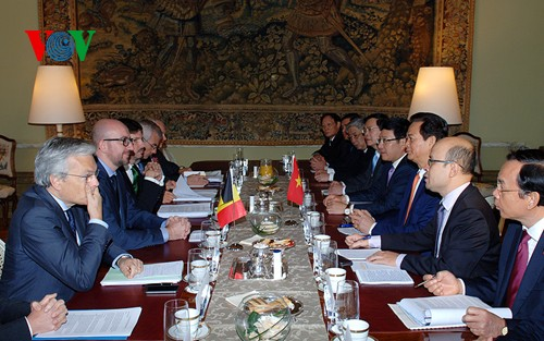 Thủ tướng Nguyễn Tấn Dũng hội đàm với tân Thủ tướng Vương quốc Bỉ Charles Michel - ảnh 3