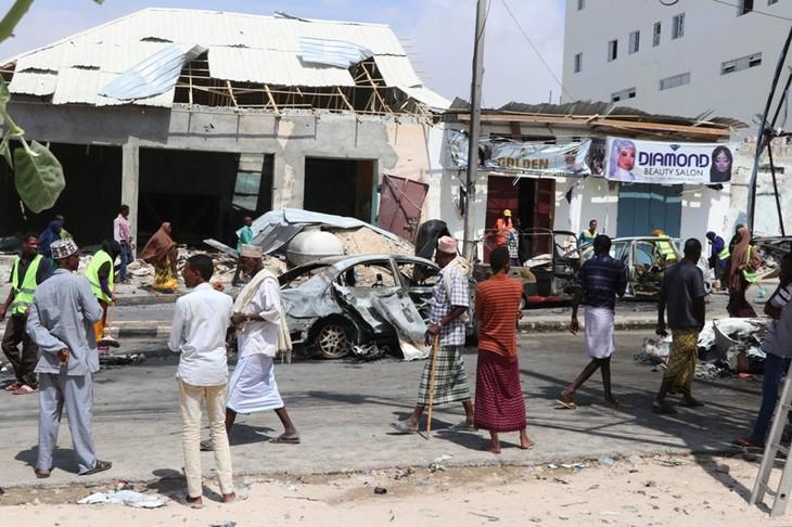 Việt Nam kêu gọi các bên tại Somalia đối thoại - ảnh 1