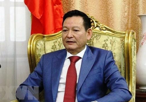 Việt Nam triển khai công tác bảo hộ công dân ở Lebanon - ảnh 1