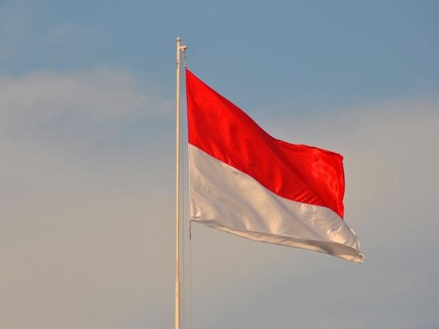 Kỷ niệm 75 năm Quốc khánh nước Cộng hòa Indonesia - ảnh 1