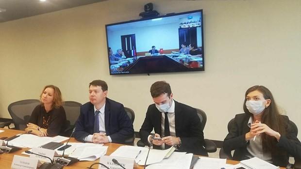 Việt Nam và Nga thảo luận các dự án đầu tư ưu tiên trong bối cảnh đại dịch COVID-19  - ảnh 1