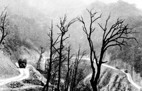 Con đường trên cao song hành cùng đường Hồ Chí Minh huyền thoại - ảnh 1