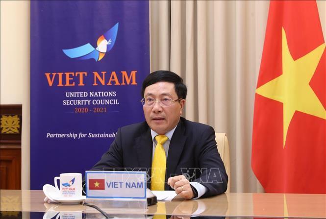 Việt Nam ủng hộ việc thực hiện Nghị quyết của Hội đồng Bảo an Liên hợp quốc  - ảnh 1