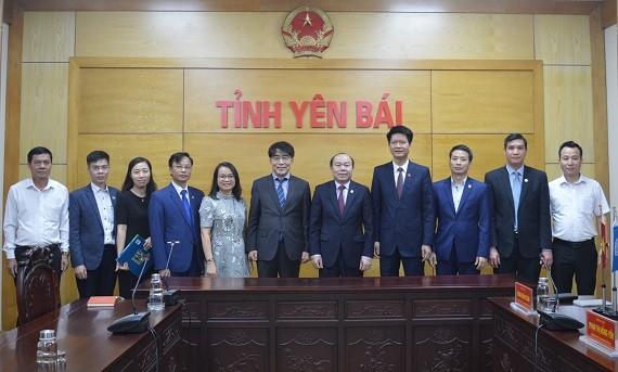 Liên minh Hợp tác xã Việt Nam và Tổ chức Lao động quốc tế làm việc với tỉnh Yên Bái - ảnh 1