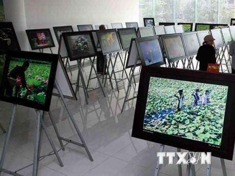 Phát động Cuộc thi ảnh Nghệ thuật Quốc tế lần thứ 11 tại Việt Nam - ảnh 1