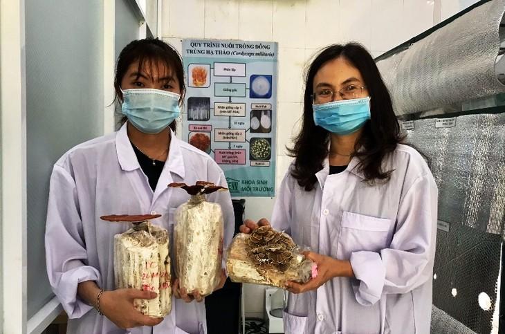Sinh viên Đà Nẵng khởi nghiệp làm trà hoa nấm thiên nhiên - ảnh 2