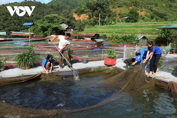 Thanh niên Lai Châu khởi nghiệp từ mô hình hợp tác xã - ảnh 1