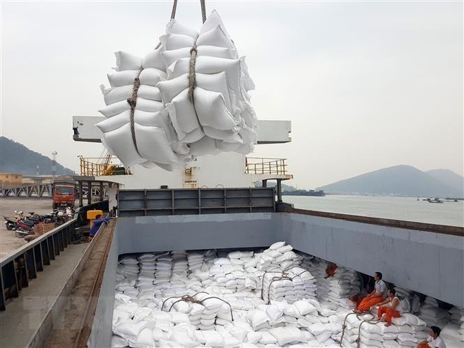 Bộ Nông nghiệp Mỹ dự báo Việt Nam sẽ tiếp tục đứng thứ 2 thế giới về xuất khẩu gạo - ảnh 1