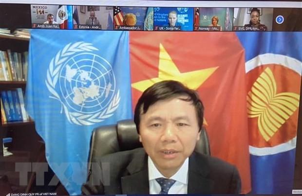 Việt Nam ủng hộ lồng ghép vấn đề giới trong phòng chống khủng bố và bạo lực cực đoan - ảnh 1