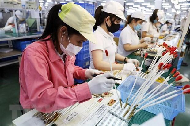 The Economic Times: Việt Nam đang nổi lên như cường quốc kinh tế trong khu vực - ảnh 1
