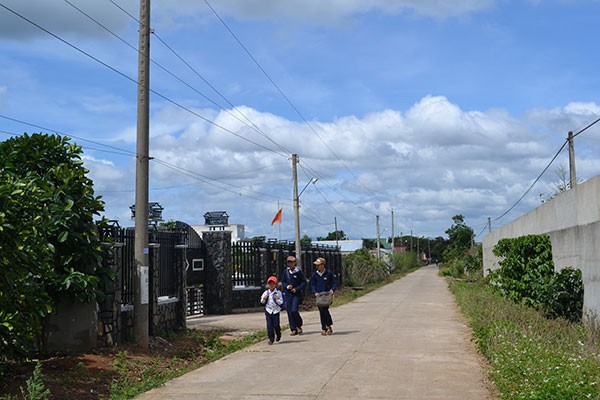 Kecamatan Da Ron menerapkan pertanian berteknologi tinggi dalam pembangunan pedesaan baru - ảnh 1